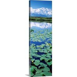 Large Solid-Faced Canvas Print Wall Art Print 16 x 48 entitled Denali National Park AK