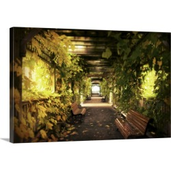 Large Gallery-Wrapped Canvas Wall Art Print 24 x 16 entitled A vine covered tunnel with seats