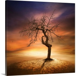 Large Solid-Faced Canvas Print Wall Art Print 20 x 20 entitled Lonely