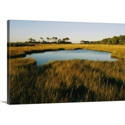 Large Gallery-Wrapped Canvas Wall Art Print 24 x 16 entitled A salt marsh in Assateague Island, Virginia