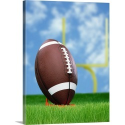 Large Solid-Faced Canvas Print Wall Art Print 30 x 40 entitled Football And Field Goal