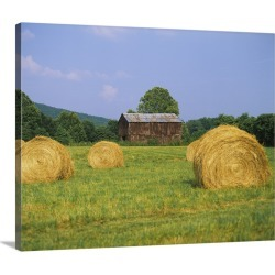 Large Gallery-Wrapped Canvas Wall Art Print 24 x 19 entitled Hay bales in a field, Tennessee