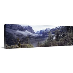 Large Gallery-Wrapped Canvas Wall Art Print 36 x 12 entitled Forest Yosemite National Park California found on Bargain Bro Philippines from Great Big Canvas - Dynamic for $179.99