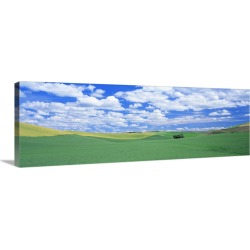 Large Solid-Faced Canvas Print Wall Art Print 48 x 16 entitled Fields Whitman County WA