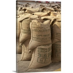 Large Gallery-Wrapped Canvas Wall Art Print 16 x 24 entitled Coffee beans packed in sacks, Guatemala found on Bargain Bro India from Great Big Canvas - Dynamic for $214.99