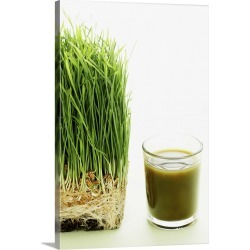 Large Gallery-Wrapped Canvas Wall Art Print 16 x 24 entitled Shot of wheat grass found on Bargain Bro India from Great Big Canvas - Dynamic for $214.99