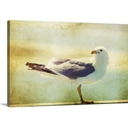 Large Gallery-Wrapped Canvas Wall Art Print 30 x 20 entitled Vintage photo of a seagull