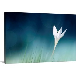 Large Solid-Faced Canvas Print Wall Art Print 30 x 20 entitled Lonely