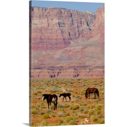 Large Gallery-Wrapped Canvas Wall Art Print 16 x 24 entitled Arizona, Grand Canyon National Park, horses in front of famou... found on Bargain Bro India from Great Big Canvas - Dynamic for $169.99