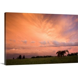 Large Gallery-Wrapped Canvas Wall Art Print 24 x 16 entitled A blazing sunset with horses in a pasture