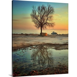 Large Solid-Faced Canvas Print Wall Art Print 24 x 30 entitled Lonely tree, Croatia