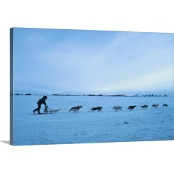 Large Gallery-Wrapped Canvas Wall Art Print 30 x 20 entitled Dog sled team , Canada , North America