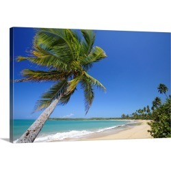 Large Solid-Faced Canvas Print Wall Art Print 30 x 20 entitled Tres Palmitas Beach