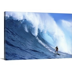 Large Gallery-Wrapped Canvas Wall Art Print 30 x 20 entitled Hawaii, Maui, Jaws, Sierra Emory Looks At Camera