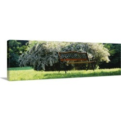Large Solid-Faced Canvas Print Wall Art Print 48 x 16 entitled Empty Park Bench, Grand Rapids, Michigan