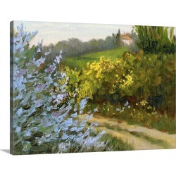 Large Solid-Faced Canvas Print Wall Art Print 40 x 30 entitled Rosemary by the Road