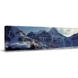 Large Solid-Faced Canvas Print Wall Art Print 48 x 16 entitled Skis and ski poles on a snow covered landscape, Mt Assinibo...