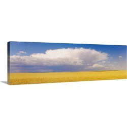 Large Solid-Faced Canvas Print Wall Art Print 48 x 16 entitled Wheat Field and Clouds WA