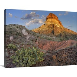 Large Gallery-Wrapped Canvas Wall Art Print 24 x 18 entitled Prickly Pear Cactus at Cerro Castellan, Big Bend National Par... found on Bargain Bro India from Great Big Canvas - Dynamic for $234.99
