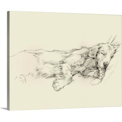 Large Gallery-Wrapped Canvas Wall Art Print 20 x 16 entitled Dog Days III