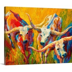 Large Solid-Faced Canvas Print Wall Art Print 30 x 24 entitled Longhorn Dance