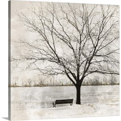Large Solid-Faced Canvas Print Wall Art Print 20 x 20 entitled Lonely Tree