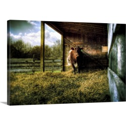 Large Gallery-Wrapped Canvas Wall Art Print 24 x 16 entitled A cow in a cow shed with hay