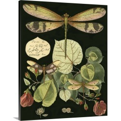 Large Solid-Faced Canvas Print Wall Art Print 24 x 30 entitled Whimsical Dragonfly on Black II