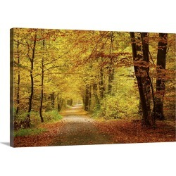 Large Gallery-Wrapped Canvas Wall Art Print 24 x 16 entitled Pathway In Autumn Forest