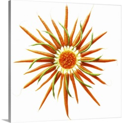 Large Solid-Faced Canvas Print Wall Art Print 20 x 20 entitled Wheel of Carrots and Green Beans