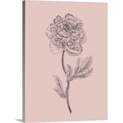 Large Solid-Faced Canvas Print Wall Art Print 30 x 40 entitled Peony Blush Pink Flower found on Bargain Bro India from Great Big Canvas - Dynamic for $274.99
