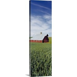 Large Solid-Faced Canvas Print Wall Art Print 16 x 48 entitled Barn and Wheat Field WA