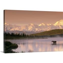 Large Gallery-Wrapped Canvas Wall Art Print 24 x 16 entitled Moose Standing in Wonder Lake Below Alaska Range IN