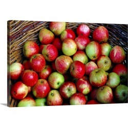 Large Solid-Faced Canvas Print Wall Art Print 30 x 20 entitled A basket of Irish Apples