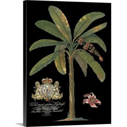 Large Solid-Faced Canvas Print Wall Art Print 30 x 40 entitled Palm on Black II