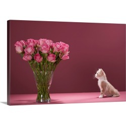 Large Solid-Faced Canvas Print Wall Art Print 30 x 20 entitled Kitten admiring vase of roses