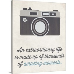 Large Gallery-Wrapped Canvas Wall Art Print 19 x 24 entitled Camera, cream