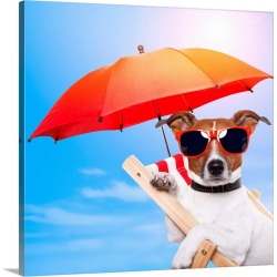 Large Solid-Faced Canvas Print Wall Art Print 20 x 20 entitled Dog Sunbathing On A Deck Chair