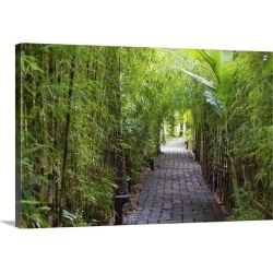 Large Gallery-Wrapped Canvas Wall Art Print 24 x 16 entitled Stone pathway in tropical rainforest, Ubud, Bali, Indonesia