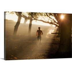 Large Gallery-Wrapped Canvas Wall Art Print 24 x 16 entitled Park Fitness found on Bargain Bro India from Great Big Canvas - Dynamic for $214.99