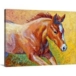 Large Solid-Faced Canvas Print Wall Art Print 40 x 30 entitled Sorrel Filly