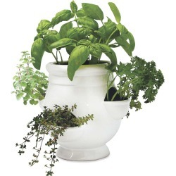 Windowsill Herb Garden Kit found on Bargain Bro Philippines from Plow & Hearth for $29.95