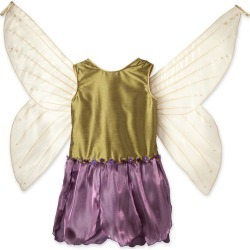 Fairy Dresses with Wings found on Bargain Bro India from HearthSong for $49.98