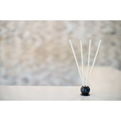White Tea and Thyme 10 Piece Pre-Scented Sticks with Vase