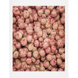 Catherine Mcdonald Flower Market 2 Art Print 8