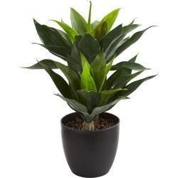 """21"""" x 16"""" Artificial Agave Plant in Decorative Pot Green/Black - Nearly Natural"""