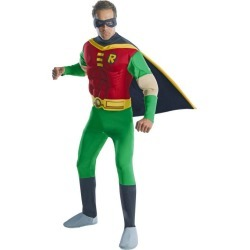 Halloween Men's DC Comics Robin Muscle Chest Halloween Costume, Size: Small, MultiColored
