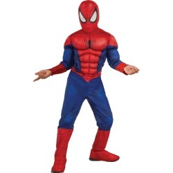 Halloween Boys' Marvel Spider-Man Muscle Chest Costume Large (12-14), Boy's, Blue/Red