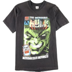 Men L /wbf9751 in the 90s made in Fruit of the Loom FRUIT OF THE LOOM THE INCREDIBLE HULK Incredible Hulk print T-shirt USA