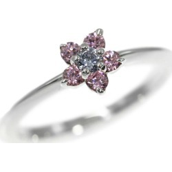Star jewelry 2 color stone flower ring, ring /Sv925-1.6g/9 /#49/ silver X pink X blue /STAR JEWELRY ■ 285754
